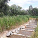 Technischer Beckenpass KW Rennmühle an der Feistritz (Größenbestimmender Fisch: Hecht 90 cm)