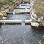 Technischer Beckenpass KW Mitterdorf I an der Mürz (Größenbestimmender Fisch: Huchen 80 cm)