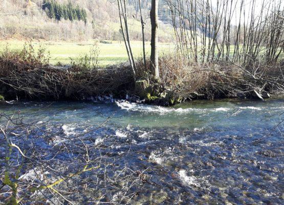 Gewässerbewirtschaftungs- konzept Liesing